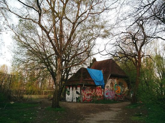 Abandoned Buildings Graffiti Forest Abandoned Places Trees Nature