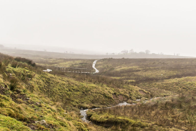 Fog Landscape Scenics Tranquility Nature Outdoors Tree No People Beauty In Nature Winding Road Water Day Mountain Ireland Black Mountain