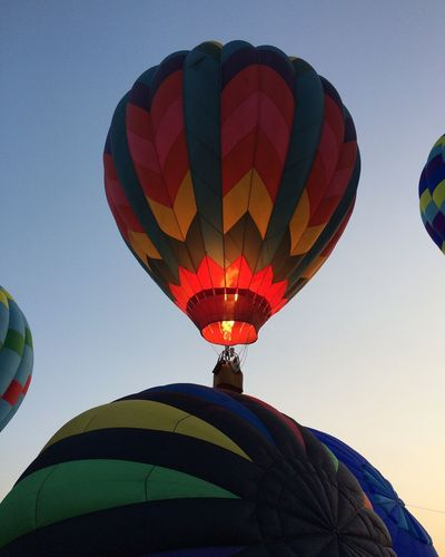 Ignition♨️💨🎈🌞 Hot Air Balloon Low Angle View Multi Colored Adventure Ballooning Festival Sky Mid-air Clear Sky Traditional Festival Outdoors Flying Day No People Nature Summer Views Tadaa Community