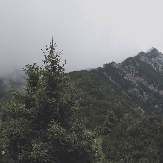 Mountain View Mountain Mountains Fog Foggy Mountain Climbing Italy Italia EyeEm Best Shots Eye4photography