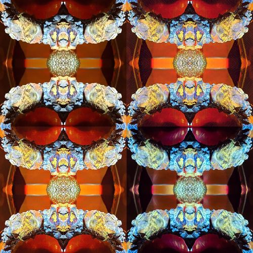 Colorful Symmetry Multi Colored No People Its All In The Details Do You See What I See? Filtered Image Fossils And Rocks Imagine Complexity Eyes Watching You Emperor Artbyart