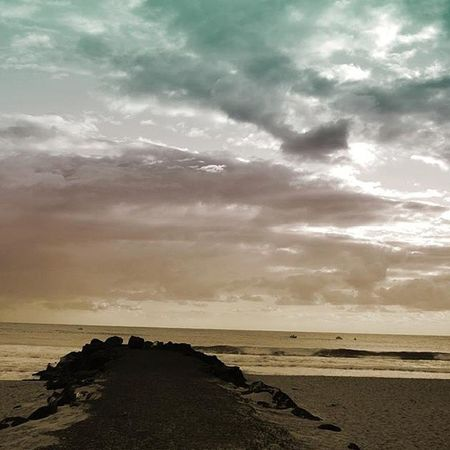 Beach GoldCoast Palmy