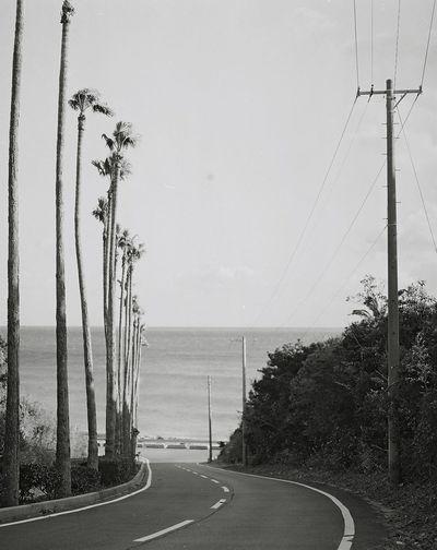 Japan 120mm Film Photography Photo EyeEm Best Shots B&w Blackandwhite