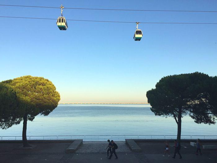 Promenade Water Tree Sky Clear Sky Horizon Over Water Transportation Incidental People Horizon Outdoors