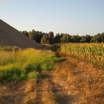 De paseo canino, explorando territorio desconocido Sinfiltro Badajoz Balboa Neboa Gaia Depaseo