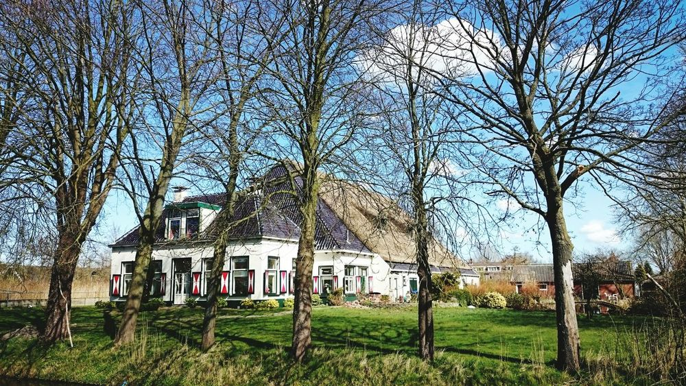 Old Farmhouse in Groningen. Light And Shadow, Dutch Landscape, Rural Scenes
