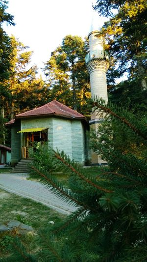 Mosque Hanging Out Taking Photos Check This Out Enjoying Life HTC_photography Bolu Golcuk Turkey Nature_collection