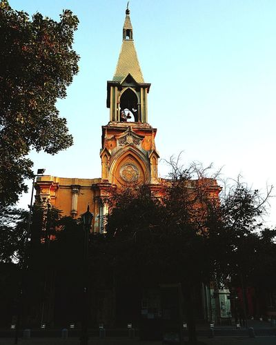 a bell tower rises up among the dark trees, to remind us that he too exists ... although it has been a bit forgotten Santiago De Chile City America Latina Clock Clock Face City Tree Clock Tower History Sky Architecture Building Exterior