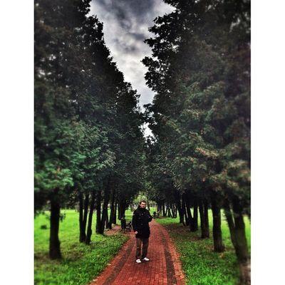 #hdr #hrd_pics #hdr_house #nature #ua_iphoneography #kiev_ig #kievblog #insta_kiev #ukraine_art #insta_kyiv #инстаграм_порусски #kiev #ukraine #iphonesia #photooftheday #photooftheweek #айфонография #iphoneonly #beautiful #amazing #киев #украина #real_ukr Киев Ua_iphoneography Nature Real_ukraine Beautiful Kievblog HDR Ukraine_art Amazing инстаграм_порусски Park Insta_kyiv Alley Insta_kiev Kiev айфонография Iphoneonly Kiev_ig Photooftheday Hdr_house Iphonesia Ukraine Photooftheweek украина HRD_pics