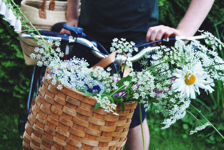 Midsection Of Woman Holding Bicycle With Flowers In Basket