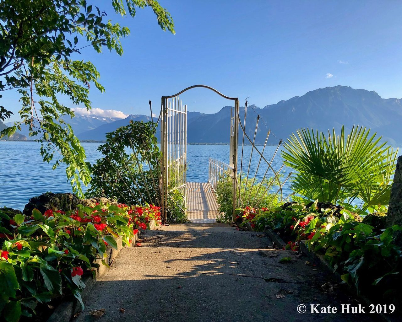 water, plant, sea, nature, beauty in nature, sky, day, flowering plant, growth, flower, the way forward, direction, sunlight, scenics - nature, mountain, architecture, tranquil scene, no people, tranquility, outdoors, horizon over water