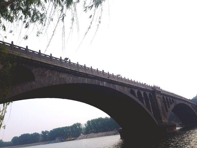 ChineseArt Longmen Grotto Grotto Traveling Bridge Architecture