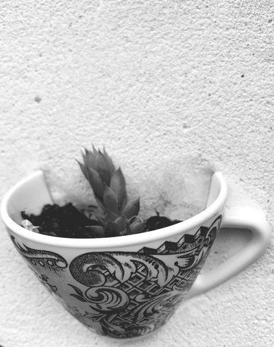 Concrete Mug