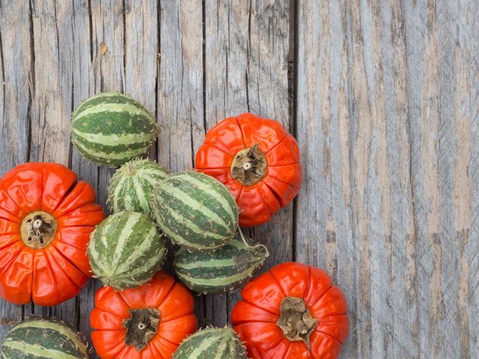 High angle view of pumpkins on wood