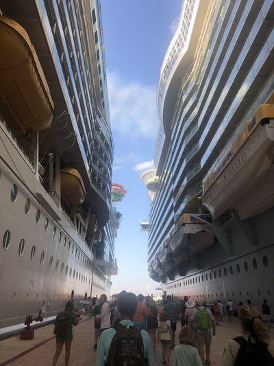 Cruise lif