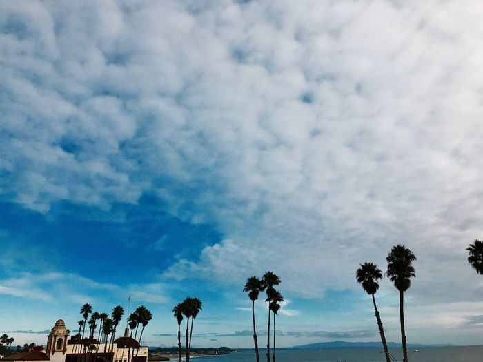 Santa Cruz ❤️ Cloud - Sky Tree Sky Nature Beauty In Nature Growth No People Tranquility Landscape Scenics Day Tranquil Scene Outdoors Finding New Frontiers Vacation Destination Landscape_Collection California Coast Miles Away Neighborhood Map Perspectives On Nature