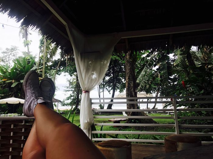 Low Section One Person Real People Human Foot Personal Perspective Tree Human Body Part Day Lifestyles Leisure Activity Outdoors Women Nature Young Adult Sky Adult People Converse Costa Rica Amazing View Relaxing Tan Legs ThatsMe
