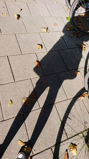 Shadow Sunlight Focus On Shadow High Angle View Outdoors Day Selfie Portrait Me Bike Wheel Person Silhouette