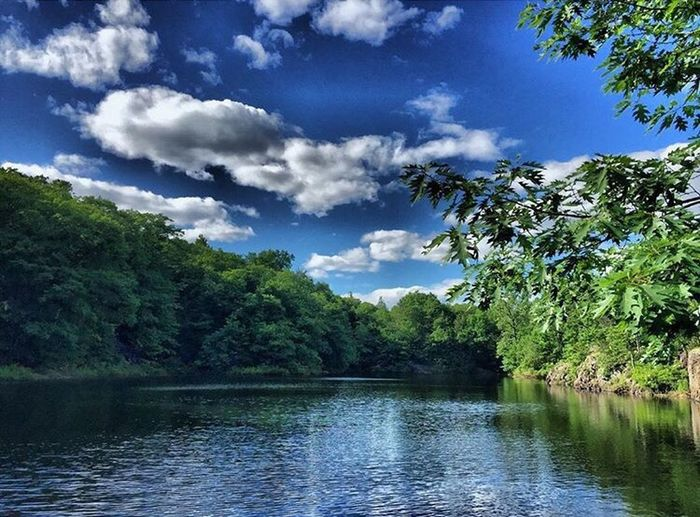 Water Tree Tranquil Scene Tranquility Scenics Waterfront Sky Beauty In Nature Cloud Nature Reflection Lake Idyllic Calm Majestic Cloud - Sky Non-urban Scene Green Color Day Growth