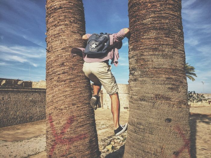 Damn this lil monkey.. Traveling Palm Trees Climbing Converse TakeoverMusic