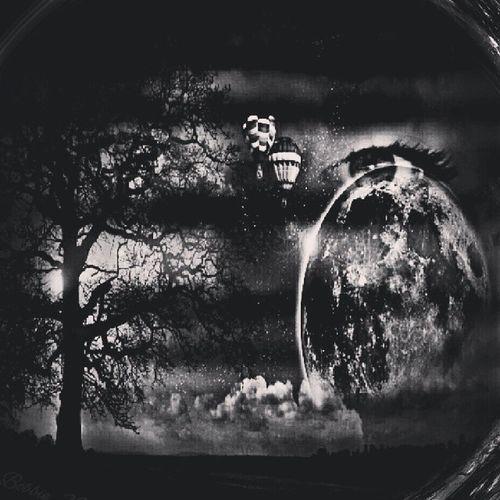 Streamzoofamily Sh_challenge ScavengerHuntChallenge SH_blackandwhite zoostersphotographymoststunningshots