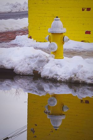 Always waiting Hydrant Fire Hydrant Water Puddleography Reflection Water Reflections Free Open Edit Open Edit For Everyone Yellow Wall