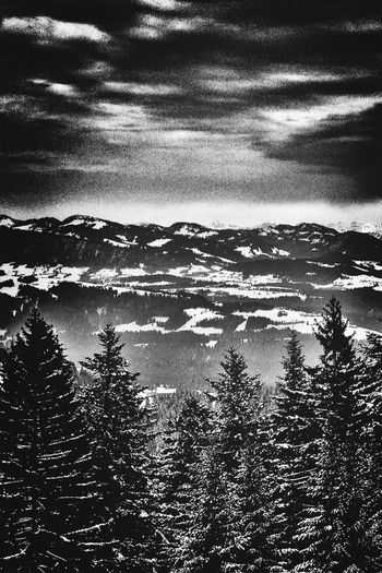 "Greetings from the #alps. Taken at the ""Pfänder"". Blackandwhite Landscape_Collection EyeEm Nature Lover"