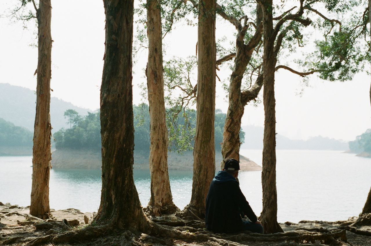 tree, water, tree trunk, trunk, plant, tranquility, nature, beauty in nature, tranquil scene, scenics - nature, women, beach, land, sea, day, lifestyles, sitting, sky, real people, outdoors