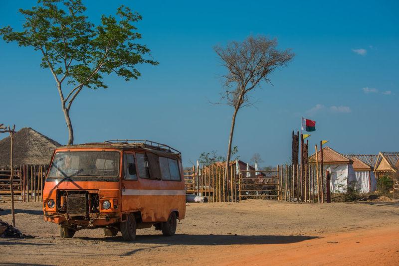 Old Van Vacations Baobab Baobab Avenue Baobab Tree Madagascar  Morondava Outdoors Sunset Tree Ziseetheworld