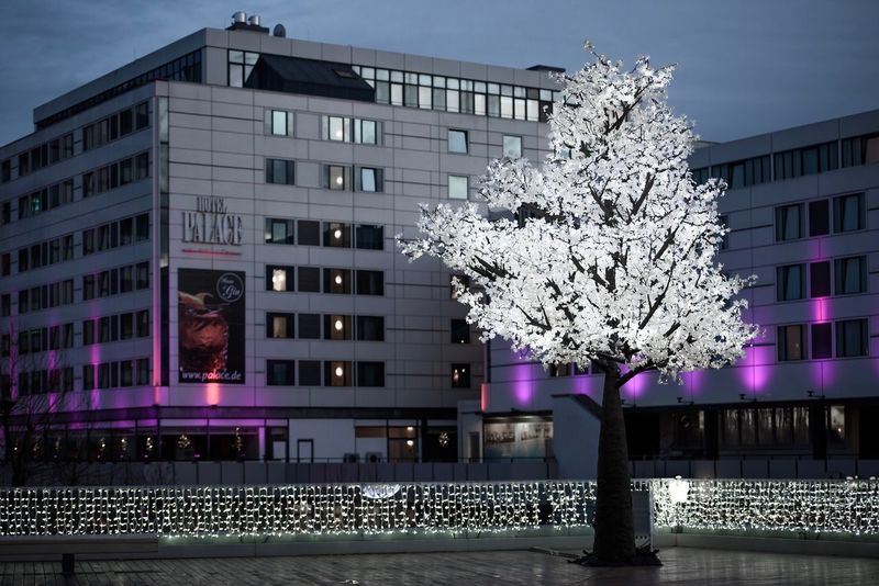 Bikini Berlin - Magic Tree Building Exterior Flower Architecture Tree Built Structure Nature Outdoors No People Branch Beauty In Nature City Fragility Night Sky Freshness