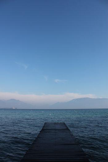 Shades Sky