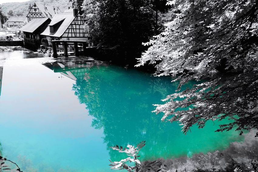 Blautopf... the color is real Colorsplash Nature Photography Beauty In Nature Blautopf Blaubeuren Vacations Turquoise Water Water Tree Reflection High Angle View Scenics Calm Tranquility