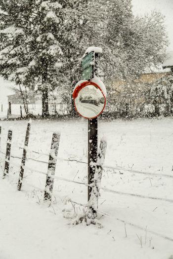 Erster Schnee First Snow Natur Nature Snow Spiegelung Winter Wintereinbruch