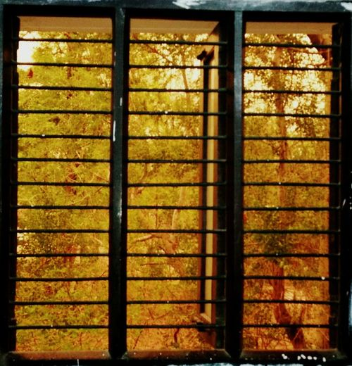 No People Full Frame Indoors  Day Window View Yellowlights EndlessWait