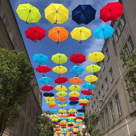 Liverpool Umbrella