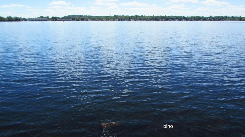 Afternòon Shoot Sunny Day 🌞 Cloud - Sky No People Bright Blue Water Cool Ripples Water Reflections Lake Cadillac Pure Michigan