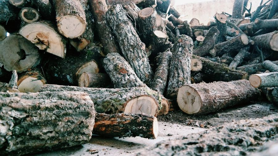 EyeEm Selects Stack Woodpile Forestry Industry Heap Log Timber Close-up Firewood Tree Ring Lumber Industry Full Frame Bonfire