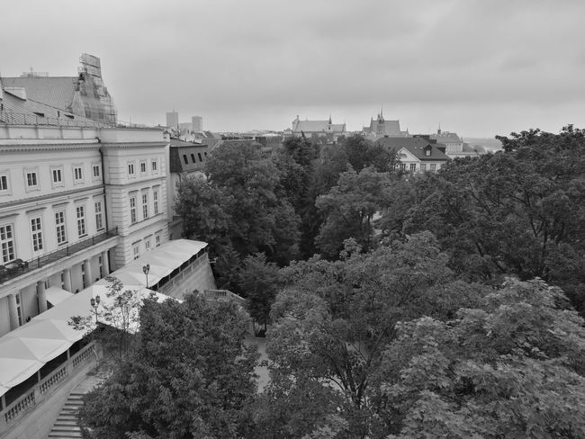 Architecture Outdoors Tree Sky City Cityscape No People Black & White Photography Rooftopview Warsaw City Old City Rainy Season