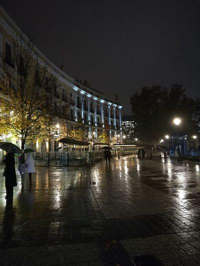 Umbrellas People Evening Rain