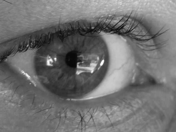 Iris - Eye Stigmata StrongerThen Reason/StrongerThanLies/TheOnlyTruthIKnow..Is The LookInYourEyes Human Face Eye Eyelash Eyesight One Person Human Eye Human Body Part Envy Deadly Sins Close-up Blackandwhite Black And White Reflection Look Into These Eyes Taking Photos Hello World Monochrome Welcome To Black B&w Long Goodbye