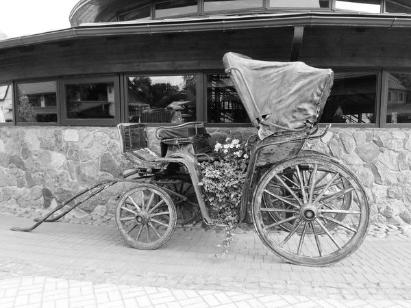My carriage 🎩 Flower Carriage Transportation Land Vehicle Mode Of Transportation No People Day Stationary Architecture Built Structure Bicycle City Building Exterior Building Street Outdoors Old Nature Obsolete Cart