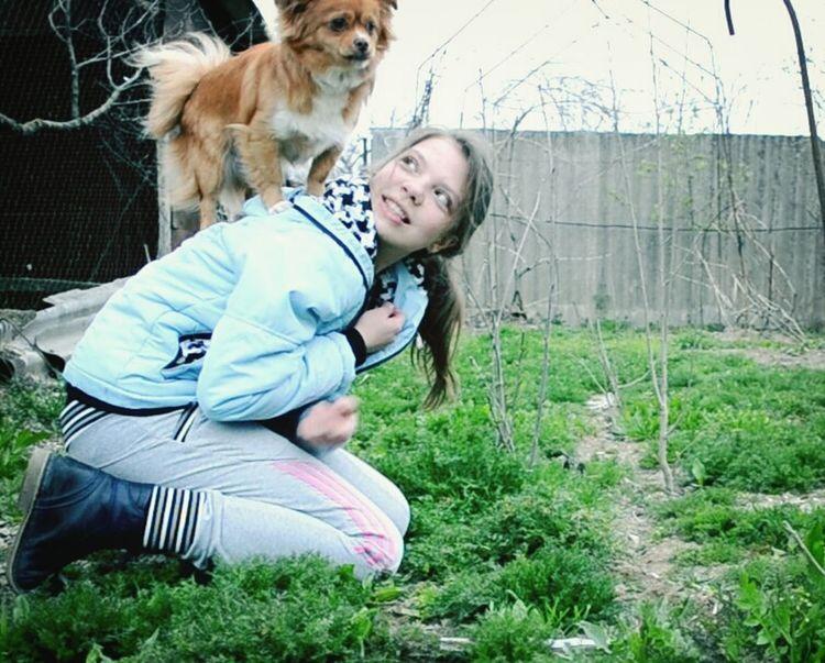 Соня :3 Еле научила эту какашку на меня запрыгивать :D Теперь я персональная Сонина подставка ;0 Dog Small Dogs  Кошки и собаки щенок