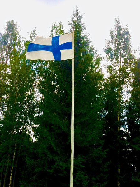 Day Finland100years Finnish Flag Flag Green Color Independence Day Low Angle View Nature No People Outdoors Sky Suomen Lippu Suomi100 Tree