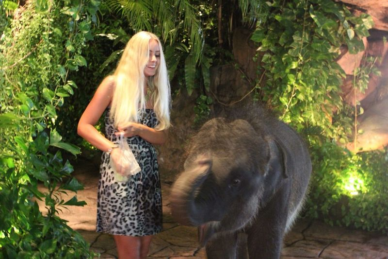 Me and the baby elephant ☺️ Check This Out Elephant