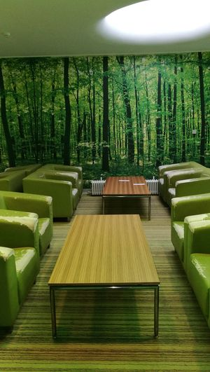 Fototapete Tree Hospital Relax Room Architecture Green Color Grass EyeEmNewHere