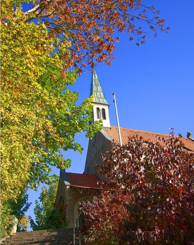 Weinbergskapelle Maria-Schmerz-Kapelle Built Structure Architecture Building Exterior Tree Sky Building Plant Low Angle View Clear Sky Religion Nature Belief Spirituality No People Place Of Worship Day Sunlight Outdoors