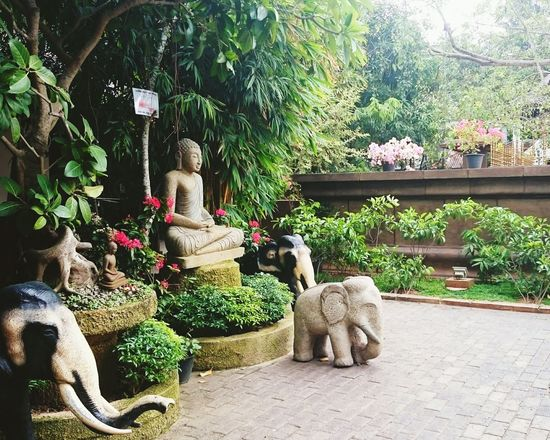 Sri Lanka Lord Buddha Temple Religious Architecture Religion And Beliefs