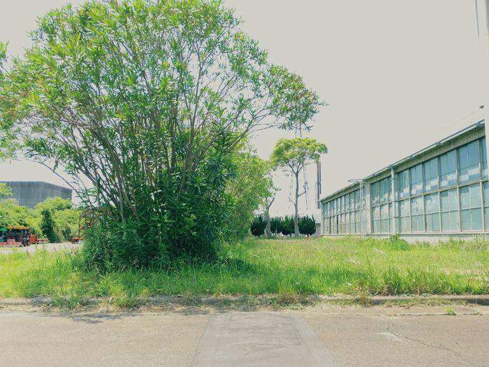 工場 Factory