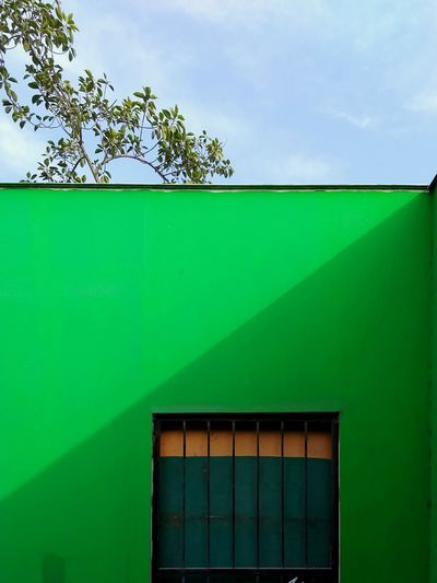 It's cooler inside. Snapseed Limaperu Green Tree Sky Architecture Building Exterior Close-up Built Structure Green Color Grass Façade Entryway Entrance Closed Door Front Door 17.62°