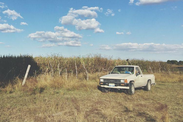 Landscape Sky Field Nature Cloud - Sky Grass Truck IPhone